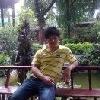 小泉34833
