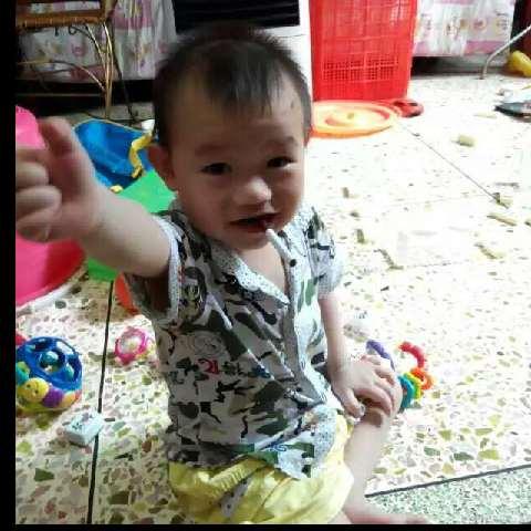 zhangzhenlin1481037717903211
