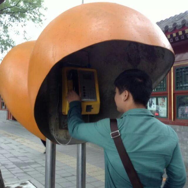 舒王杰39965