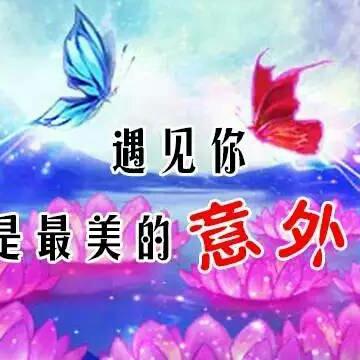 彼岸花06196