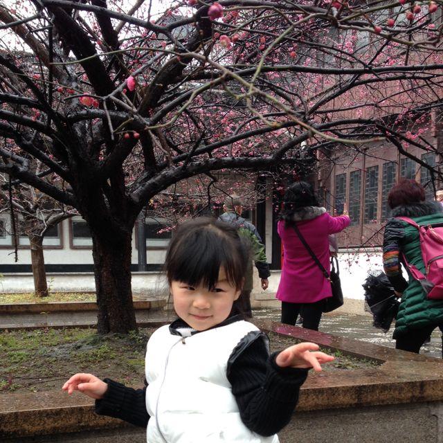 夏桂林10563