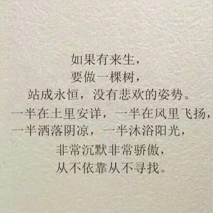 柔情agouse