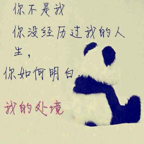 小陶熊55469