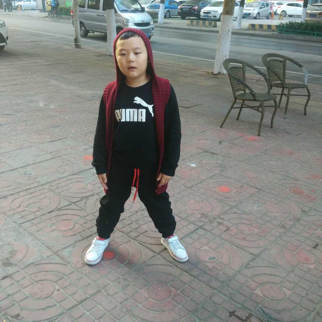 陕西楞娃41041