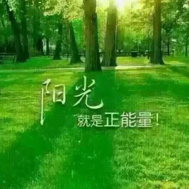 刘立虎49688