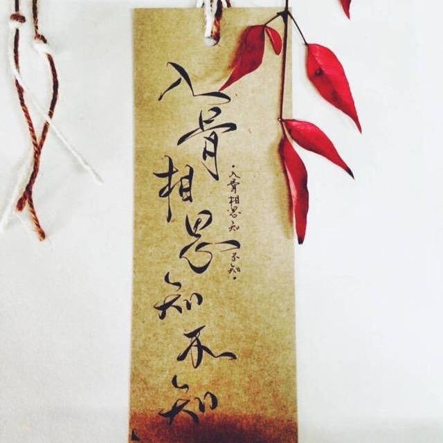 柳生07951