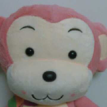 monkeyning