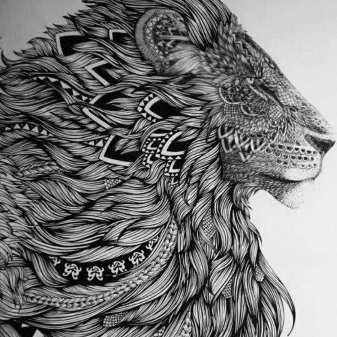 狮子1483664556860954