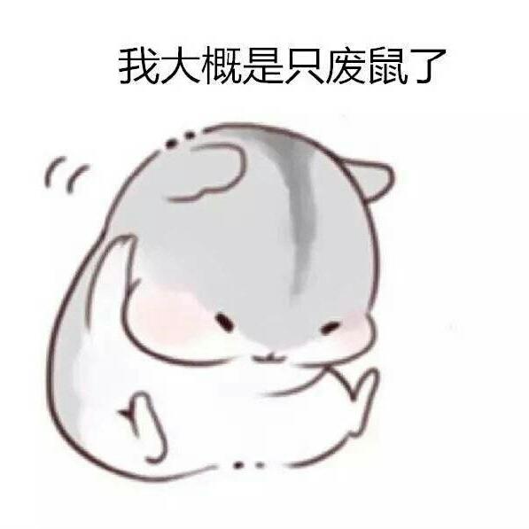 张丹莹63903