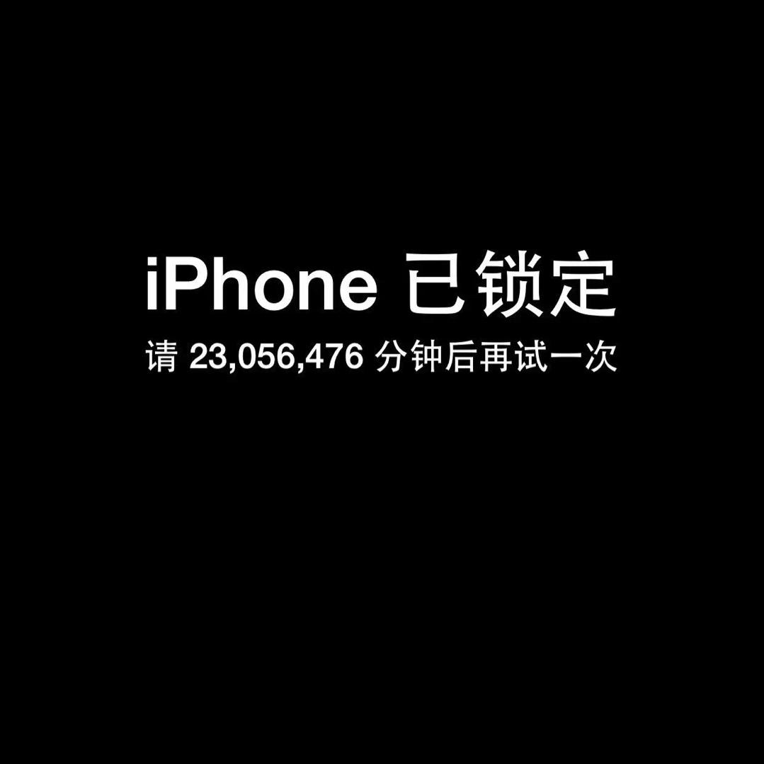 孙晓天25341