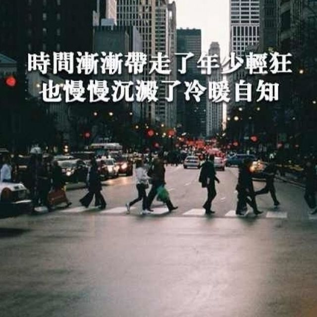 wangxin13848278029