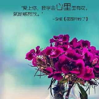刘小强49311