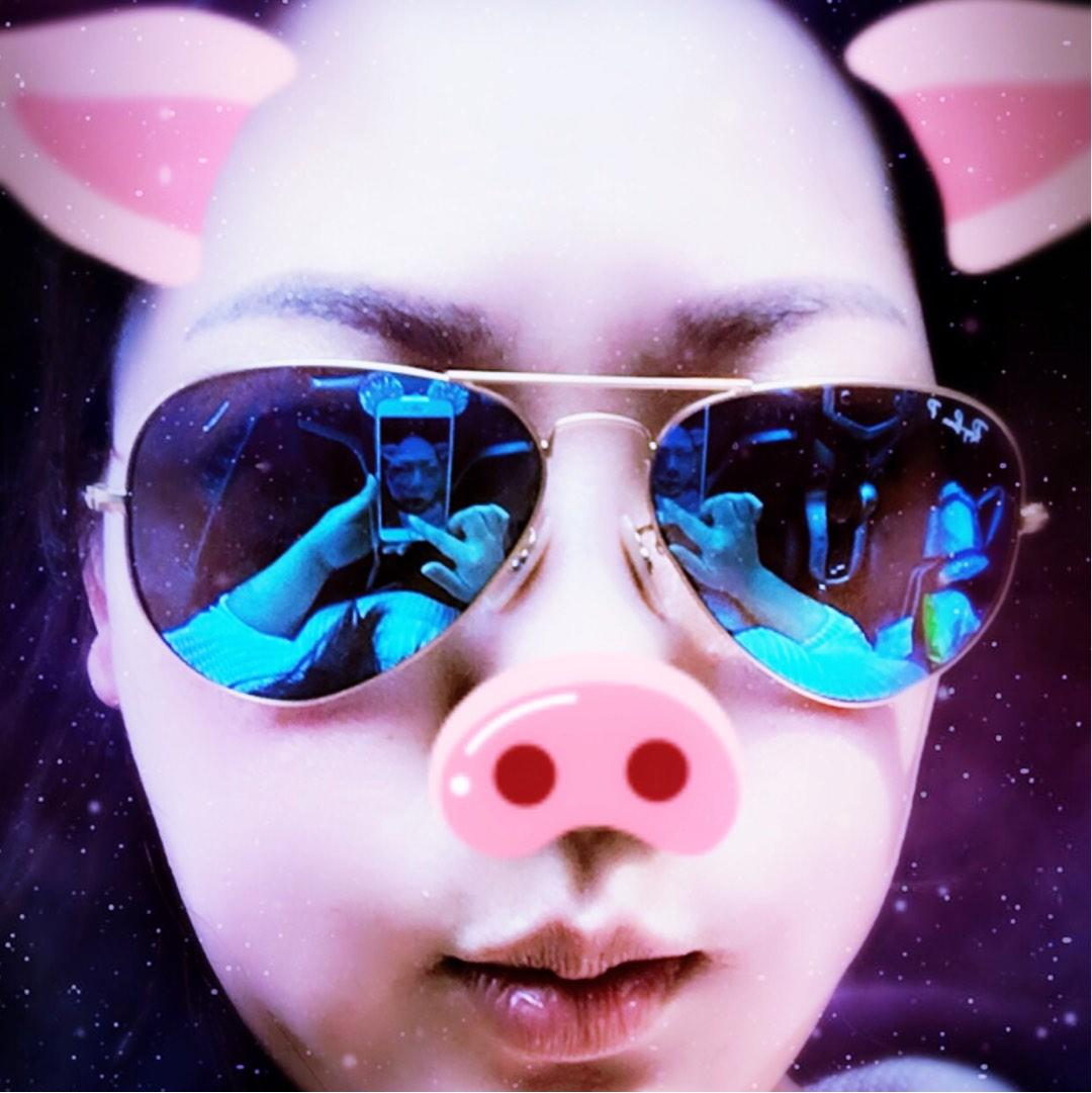 猪头61684