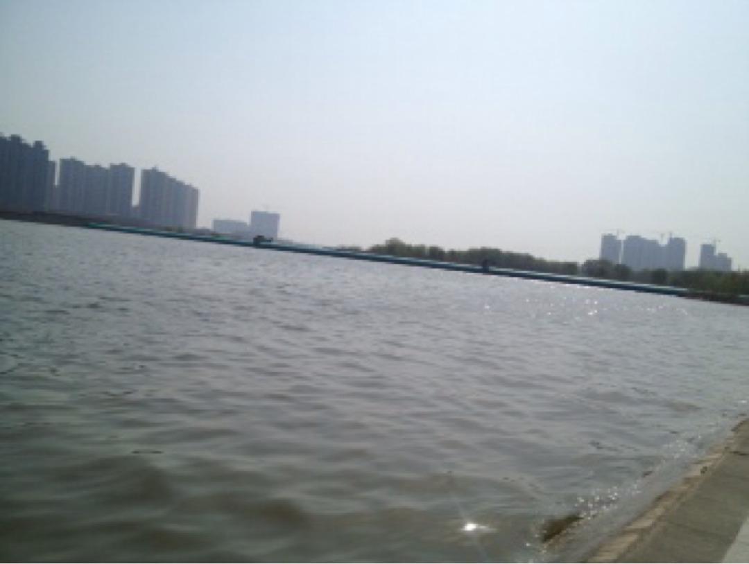 张琼20160325