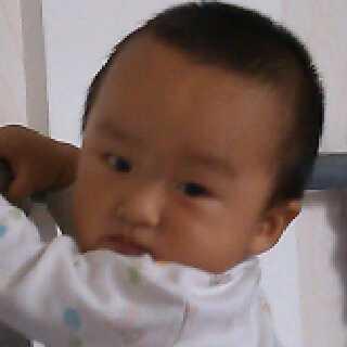 张磊46681
