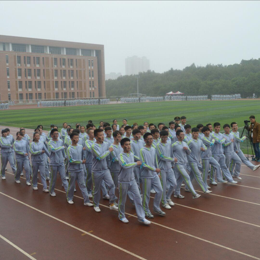 张东东33507
