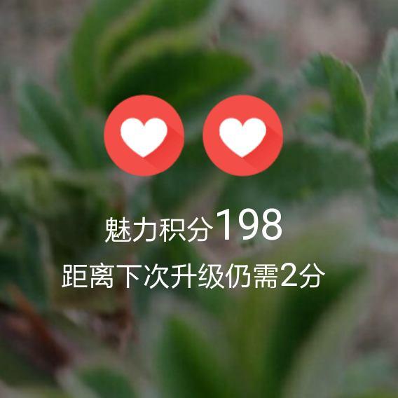 无敌天尊57483