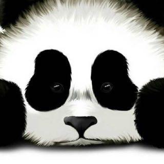 大熊猫1479655168785507