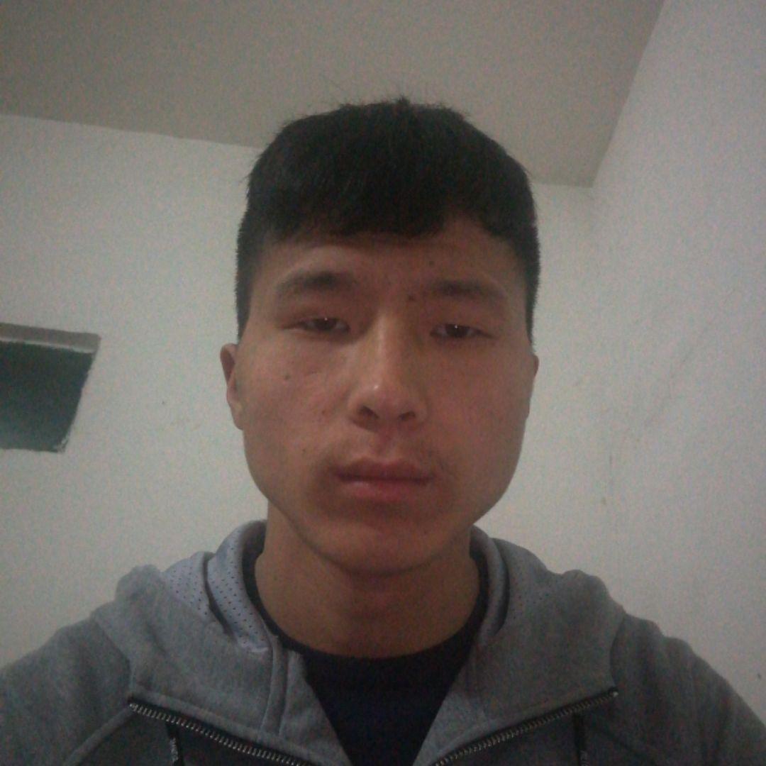 王康84374
