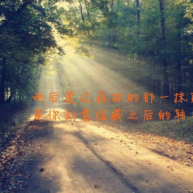 咸鱼王86464