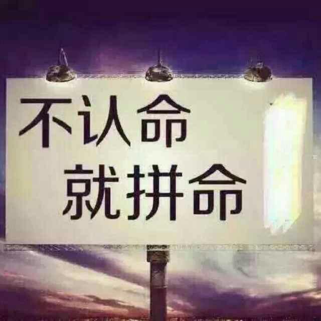 刘文周55330