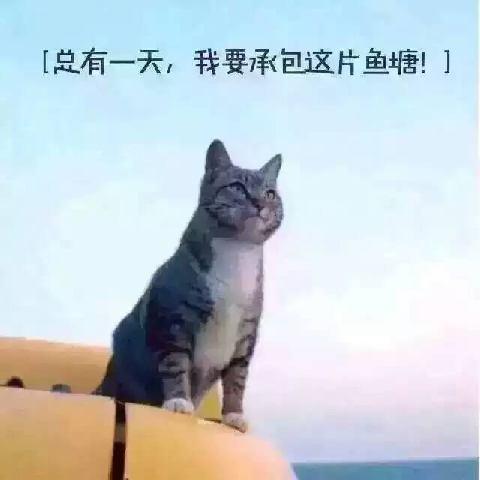 桂林山水1479556323261577