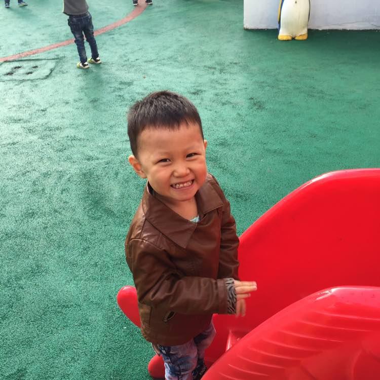 zhngjinghong0088