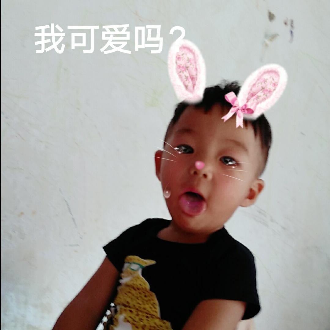 小白兔37433