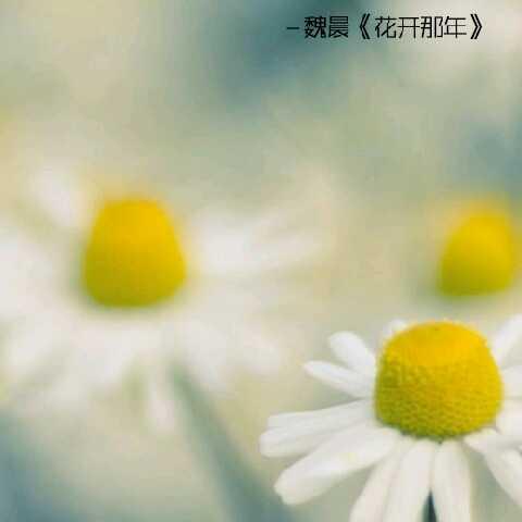 太阳神09