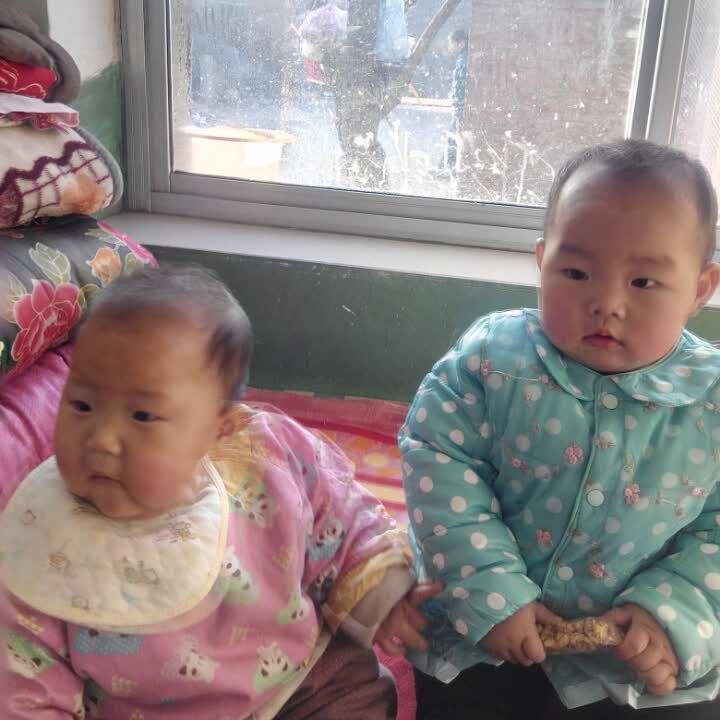 我的两个大宝贝44042