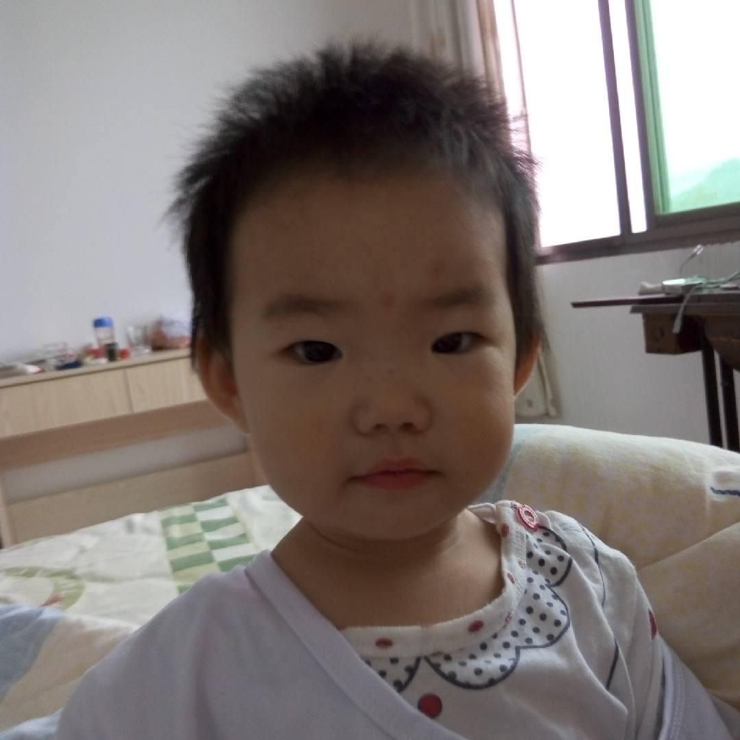 吴沛是只猪