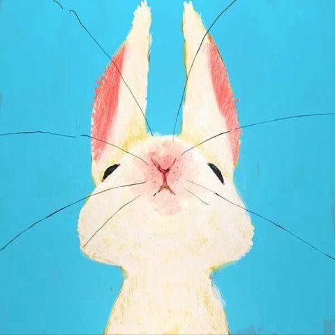 兔兔突突突哇