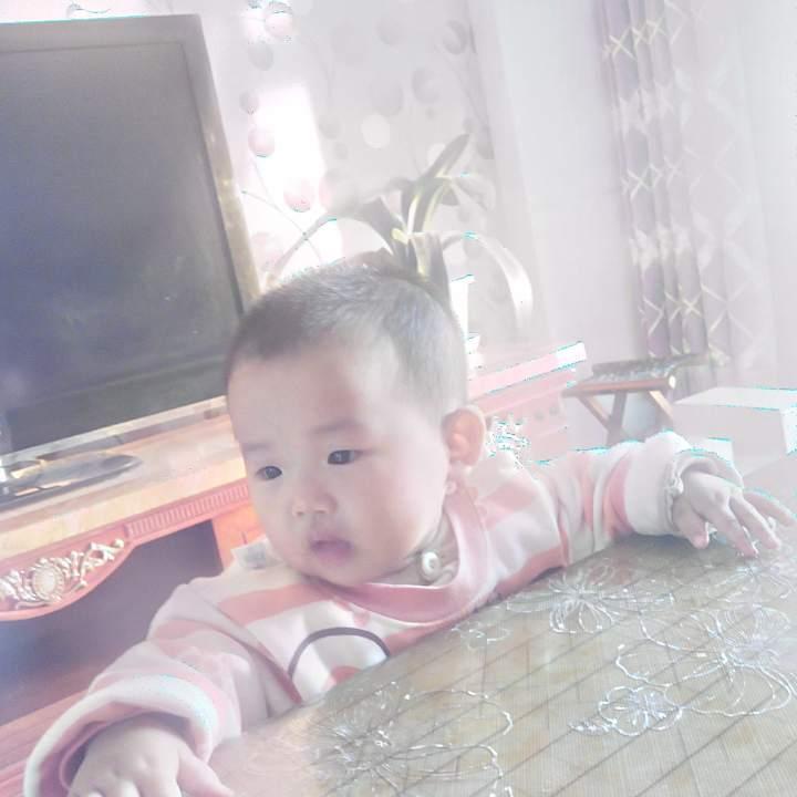 张瑜11837