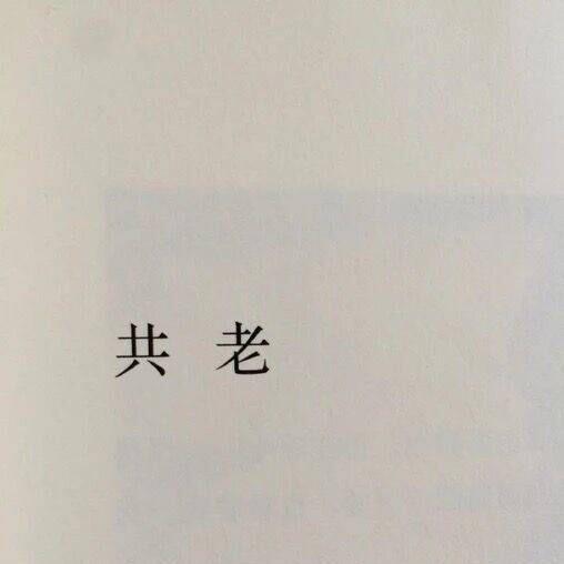 大博50659