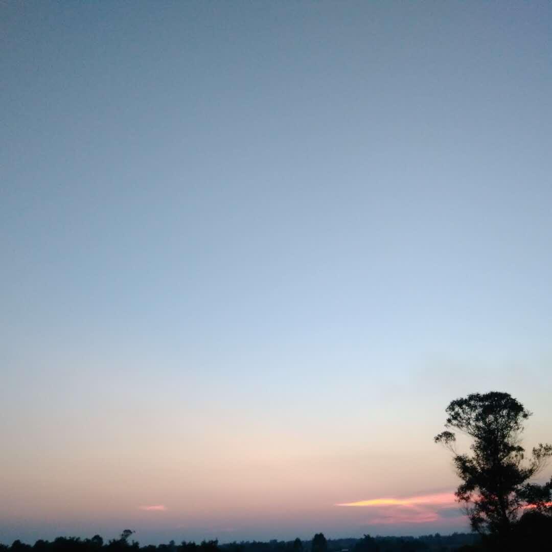 Sunsetglow41002