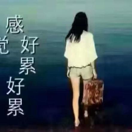 同志de汪海安