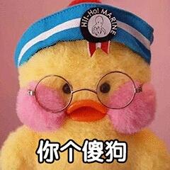 彩虹63145