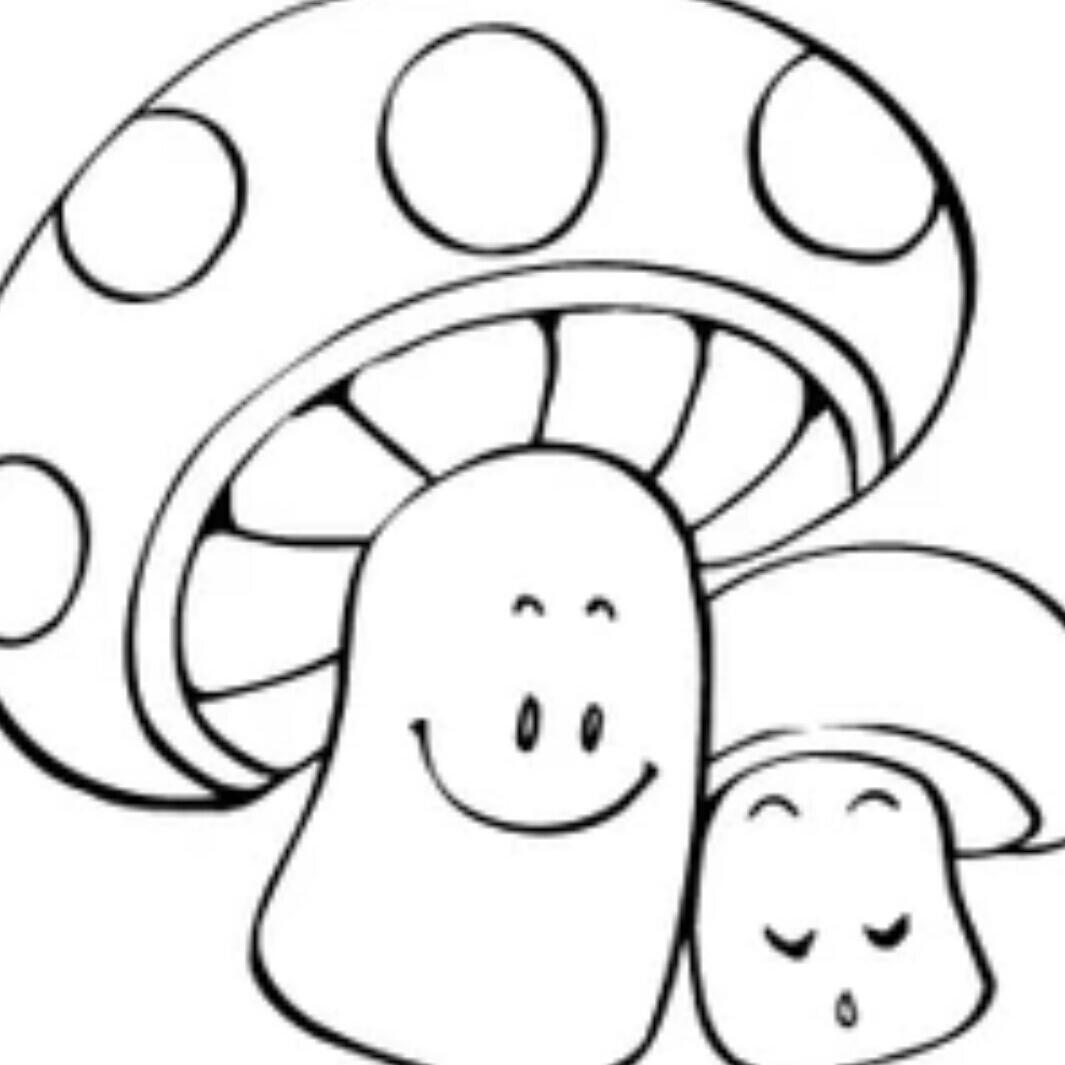 小蘑菇74662